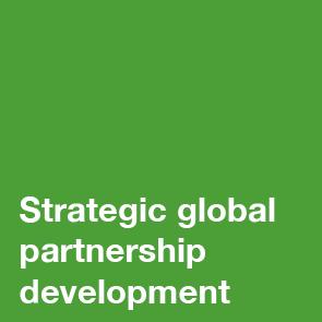 Strategic global partnership development